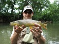 2010_07_05_trout_mn